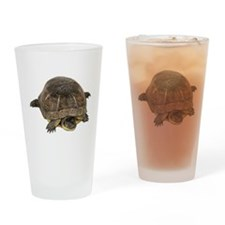Blandings Turtle Pint Glass