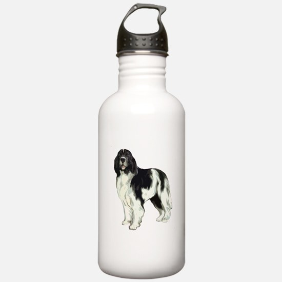 standing landseer newfoundland Water Bottle