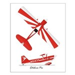 Citabria Pro Small Poster