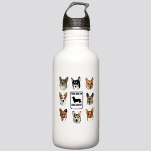 You Are in Corgi Country Stainless Water Bottle 1.