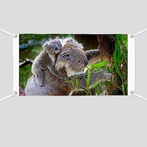 Baby Koala Bear with mom Banner