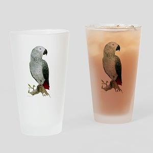 African Grey Pint Glass