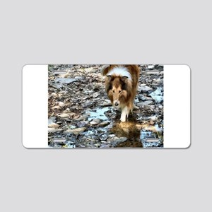 Rough Collie Art Gifts Aluminum License Plate