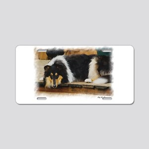 Tri Color Collie Aluminum License Plate