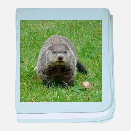 Groundhog (Woodchuck) baby blanket