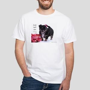 BonBonChihuahuas Black Tan Longhair Chihuahua Pupp