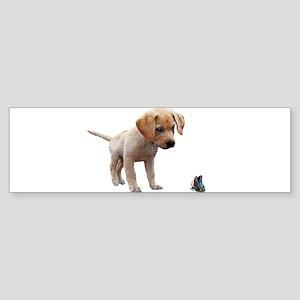 Cute Lab Puppy Eyeing Blue Butterfl Bumper Sticker