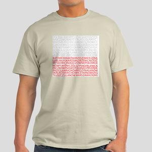 Polish Cities Flag Light T-Shirt