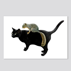 Squirrel on Cat Postcards (Package of 8)