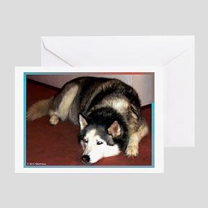 Dog, husky, photo, Greeting Card
