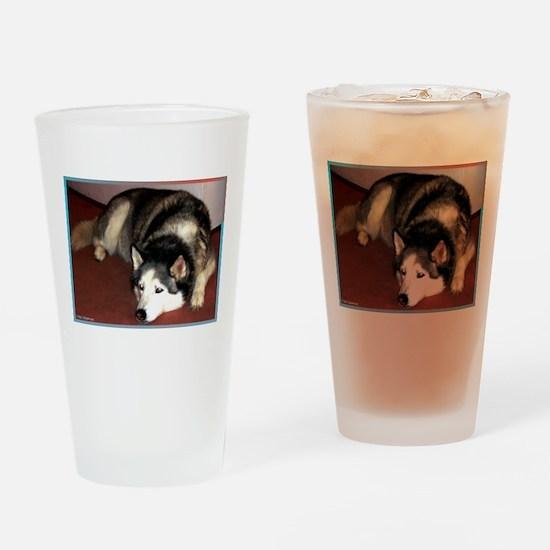 Dog, husky, photo, Pint Glass