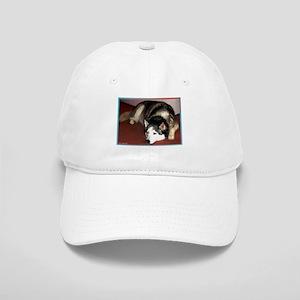 Dog, husky, photo, Cap