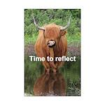 Highland cow mini poster print