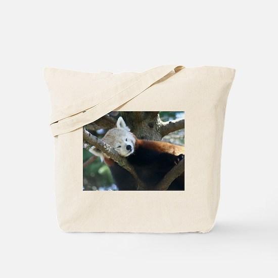 red panda napping Tote Bag