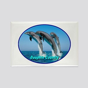 Dauphin Country Rectangle Magnet