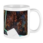 Tidepool Transect Ocean River Mug