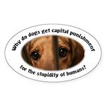 Capital Punishment Sticker (Oval)