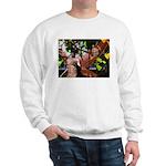 Fire Faerie Sweatshirt