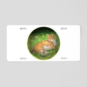 Tabby Dream Aluminum License Plate