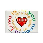 LGBT Marriage Rectangle Magnet (100 pack)