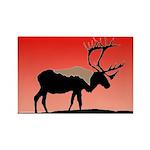 Sunset Caribou Rectangle Magnet (100 pack)