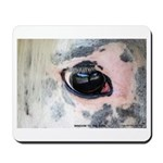 Window To The Soul Mousepad