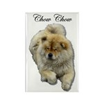 Chow Chow Dog Rectangle Magnet (10 pack)