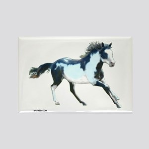 Ziggy The Stallion Rectangle Magnet