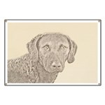 Chesapeake Bay Retriever Banner