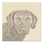 Chesapeake Bay Retriever Square Car Magnet 3