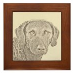 Chesapeake Bay Retriever Framed Tile