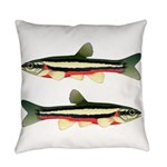 Laurel Dace Everyday Pillow