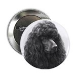 Black or Chocolate Poodle Button