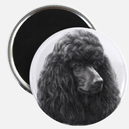 Black or Chocolate Poodle Magnet