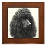 Black or Chocolate Poodle Framed Tile