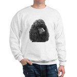 Black or Chocolate Poodle Sweatshirt