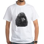 Black or Chocolate Poodle White T-Shirt