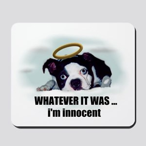 WHATEVER IT WAS IM INNOCENT  Mousepad