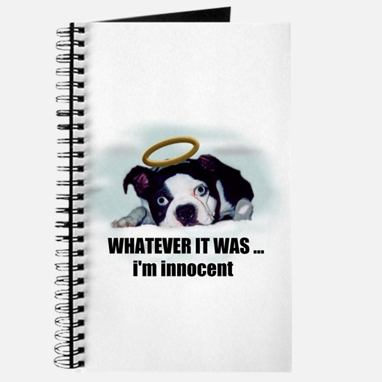 WHATEVER IT WAS IM INNOCENT Journal