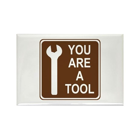 You Are A Tool Rectangle Magnet (100 pack)