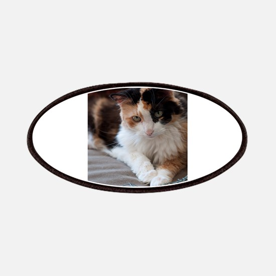Calico Kitty Patches