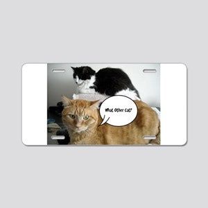 Orange Tabby Cat Humor Aluminum License Plate
