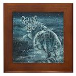 Star Leopard Framed Tile
