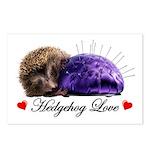 Hedgehog Love Postcards (Package of 8)
