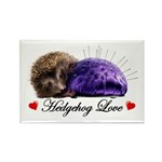 Hedgehog Love Rectangle Magnet (10 pack)