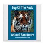 Apache Tiger Tile Coaster