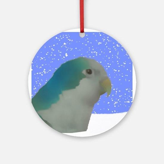 Blue Quaker Parakeet Holiday Art Ornament