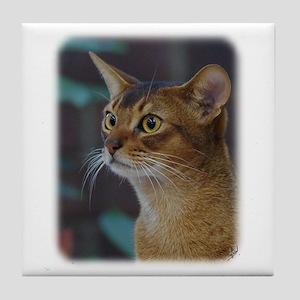 Abyssinian Cat AA025D-018 Tile Coaster
