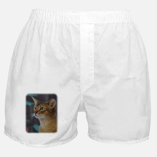 Abyssinian Cat AA025D-018 Boxer Shorts
