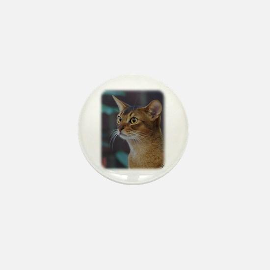 Abyssinian Cat AA025D-018 Mini Button